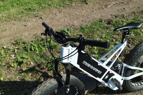 guidon fat bike