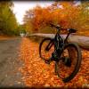 Test: 1000 mètres de dénivelé avec vélo électrique Bosch