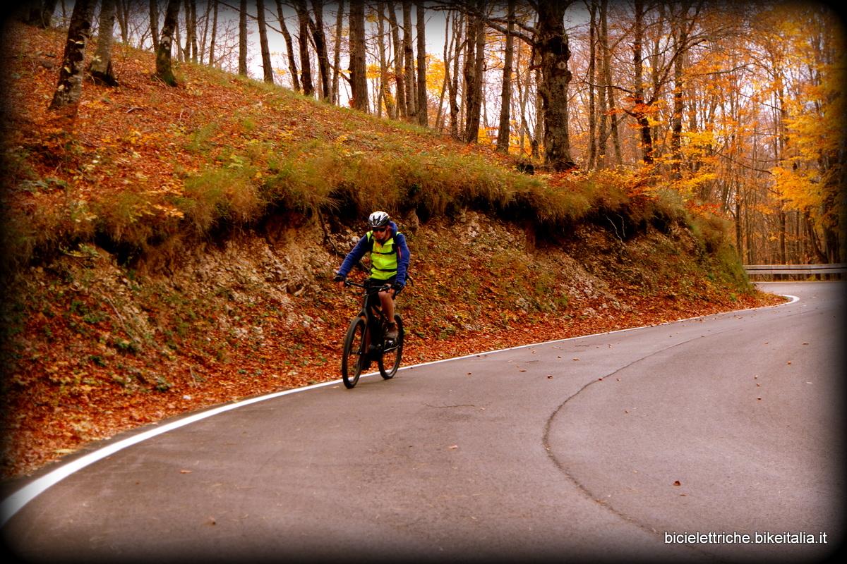 roue en automne